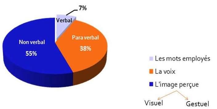 Graphique : Répartition des différentes manières de communication chez l'homme.